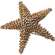 Vintage Starfish Pin Brooch - Gold Tone