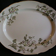 "T Furnival & Sons Polychrome Transferware ""Hawthorn"" Platter"