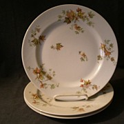 "Set  of 3 Charles Haviland & Co. Limoges - ""Jewel Tea - Autumn Leaf"" Dinner Plates"