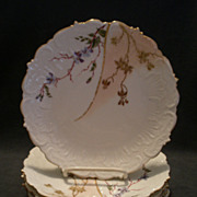 Set of 5 Limoges Hand Painted Salad/Luncheon Plates w/Floral Decoration