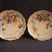 Set of 2 - Beautiful Hand Painted Porcelain Cabinet Plates w/Floral Motif