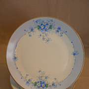 "Pair of Stouffer Studio H.P. China ""Forget-Me-Not"" Pattern Salad/Dessert Plates"