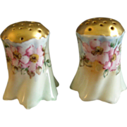 German Porcelain Hand Painted Salt & Pepper Set w/Wild Rose Floral Motif