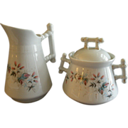 C Tielsch Floral Decorated Sugar & Creamer Set
