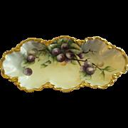 Charles Haviland & Co. Hand Painted Celery/Relish Tray w/Purple Plum Decoration