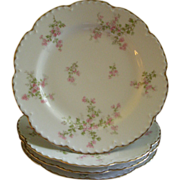 "Set of 4 Charles Haviland & Co., Limoges ""Wild Rose Motif"" Luncheon Plates, Schleiger 29A, Blank 2"