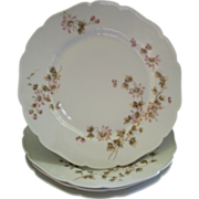 CFH/GDM Limoges Set of 4 Dinner Plates w/Passion Flower Blossoms & Vines Motif