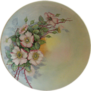 Home Studio Hand Painted Cabinet Plate w/Wild Rose Blossom Motif