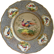 Royal Doulton H.P. 'Birds of Paradise' Cabinet Plate (6 of 6) Signed 'E Percy'