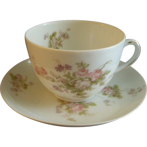 PH Leonard, Vienna, Austria, Porcelain Set of 6 Cups & Saucers w/Pink & White Rose Motif