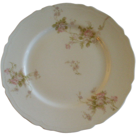 PH Leonard, Vienna, Austria, Porcelain Set of 10 Salad/Dessert Plates w/Pink & White Rose Motif