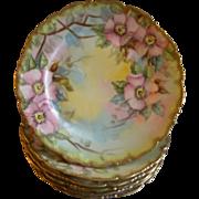 Set of 6 T&V Limoges Hand Painted B&B/Dessert Plates w/Pink Wild Roses Motif