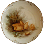Pickard Studio Hand Painted Cabinet Plate w/Naturalistic Almonds Motif