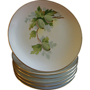 Set of 6 Austria China Hand Painted B&B/Dessert Plates w/Gooseberry Motif