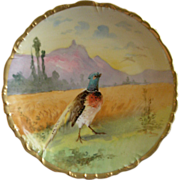 Bawo & Dotter -  Elite Limoges -  Hand Painted Cabinet Plate w/Scenic Pheasant Motif