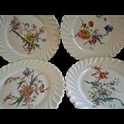 Set of 4 Theodore Haviland Salad/Dessert Plates - Torse Swirl Blank - Botanical Wildflowers Motif