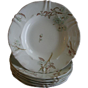 Set of 6 Theodore Haviland Wide Rim Soup Bowls - St Cloud Series w/Floral Motif - Schleiger #116 Blank