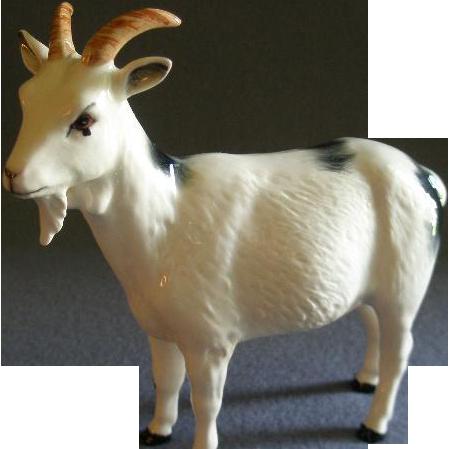 Royal Doulton Quot Nigerian Pot Bellied Pygmy Goat Quot Figurine