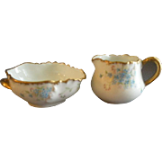 Charles Haviland & Co., Hand Painted Forget-Me-Not Decorated 'Marseilles' Blank Individual Sugar & Creamer Set, Schleiger #9