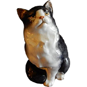 Royal Doulton Persian Cat, Seated, Style 1 Figurine HN 999