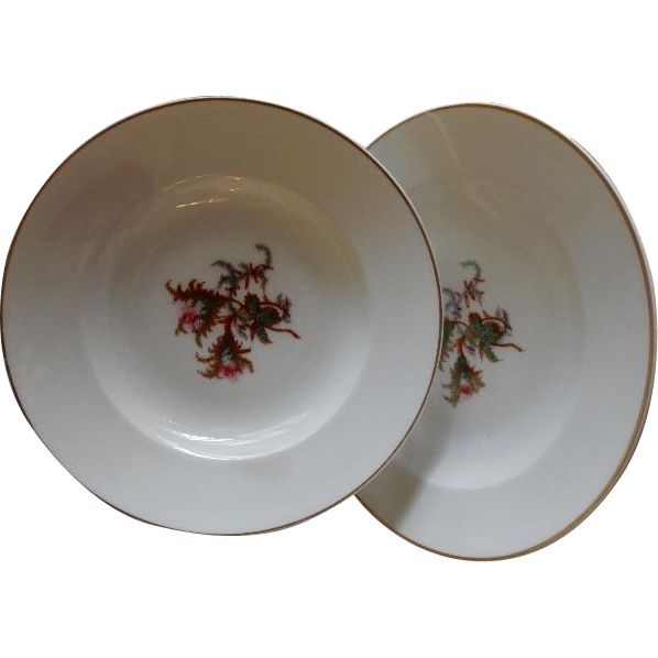 """Set of 2 - 1880's Charles Haviland & Co. Limoges """"Moss Rose"""" Pattern Large Rim Soup Bowls"""