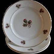 "Set of 3 - 1870's Charles Field Haviland ""Moss Rose"" Pattern Dinner Plates"