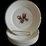 """Set of 6 - 1880's Charles Haviland & Co. Limoges """"Moss Rose"""" Pattern Salad/Desert Plates"""