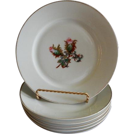 "Set of 6 - 1880's Charles Haviland & Co. Limoges ""Moss Rose"" Pattern Salad/Desert Plates"