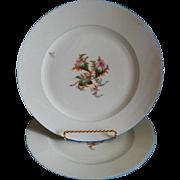 "Set of 2 - 1880's Charles Haviland & Co. Limoges ""Moss Rose"" Pattern Dinner Plates"