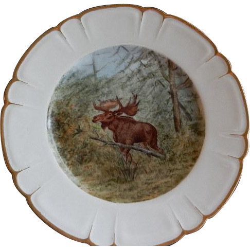 "Charles Haviland & Co. Hand Painted ""Bull Moose"" Game Plate - Artist Signed & Dated"