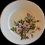 Charles F Haviland H.P. Floral Cabinet Plate, Artist Signed, 4 of 11
