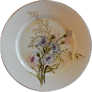 Charles F Haviland H.P. Floral Cabinet Plate, Artist Signed, 6 of 11