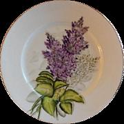 Charles F Haviland H.P. Floral Cabinet Plate, Artist Signed, 10 of 11