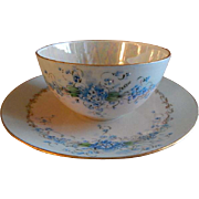 "Luken Studio Hand Painted Porcelain ""Forget-Me-Not"" Pattern Tea Cup & Saucer"