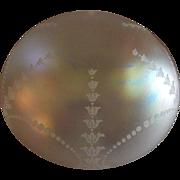 "Verre De Soie Engraved ""Dome or Mushroom"" Shape Lamp Shade"
