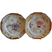Pair of Haviland & Co. Limoges Hand-Painted Cabinet Plates w/Mixed Floral Motif