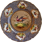 "Royal Doulton ""Bird of Paradise"" Motif Plate (3 of 6) - E Percy/Robert Allen"