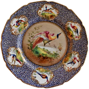 "Royal Doulton ""Bird of Paradise"" Motif Plate (5 of 6) - E Percy/Robert Allen"