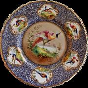 """Royal Doulton """"Bird of Paradise"""" Motif Plate (5 of 6) - E Percy/Robert Allen"""