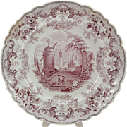 Ridgway Pomerania Early 19th Cen Violet Transfer Staffordshire Plate 1835
