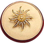 Victorian 14K Gold Starburst Seed Pearl Pendant Brooch in Box