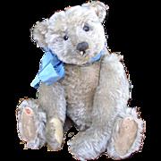 1906 Beauitful Steiff CenterSeam Teddy Bear