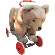 Large Mohair Steiff 1950's Cub Bear On Wheels Growler Works Button n Working Growler
