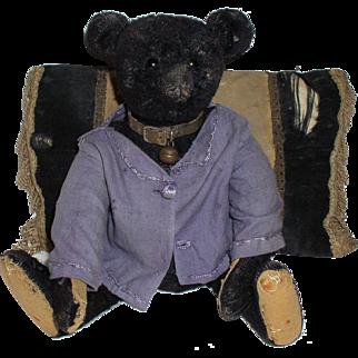 Antique Original Steiff Very Rare 1912 Steiff Titanic Black Teddy Bear