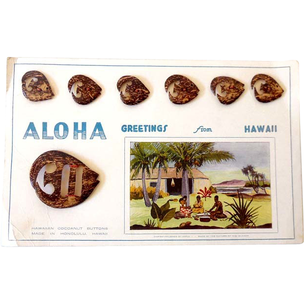 Vintage Carved Hawaiian Cocoanut Buckle & 6 Buttons on Original Card