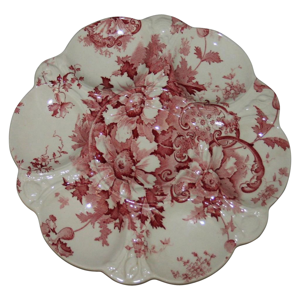 Antique Marguerite Royal Staffordshire  Red and White Oyster Plate