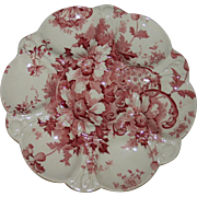 Antique Marguerite Red & White Oyster Plate by Royal Staffordshire