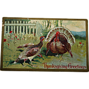 Antique Turkeys Thanksgiving Postcard
