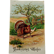 Antique Thanksgiving Postcard with Gobbler and Hen