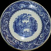Rhine 11 Inch Transferware Plate by Ridgways Blue and White